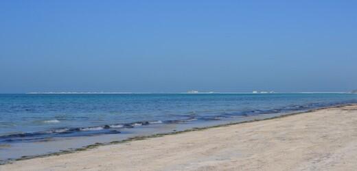 Sulle spiagge di Abu Dhabi