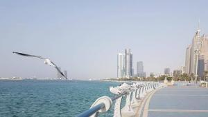 Abu Dhabi Travel Notes and Daily Life
