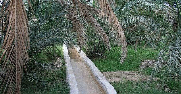 Falaj-Al-Ain-Oasis