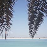 Abu-Dhabi-restart